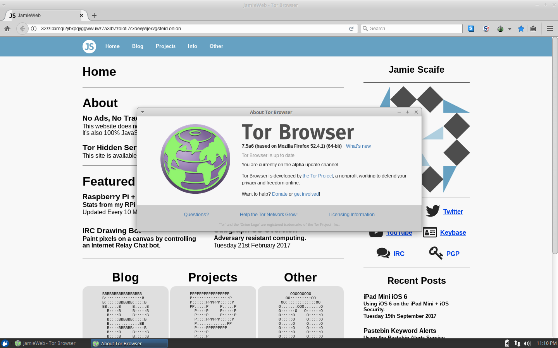 tor browser server